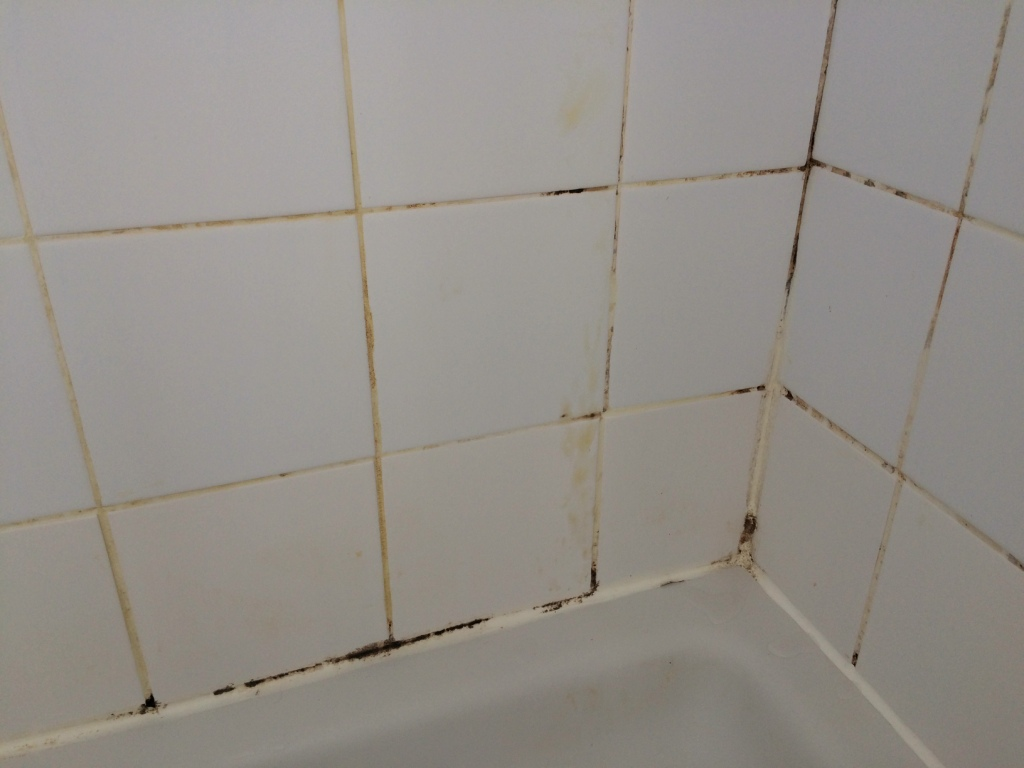 Cleaning a ceramic tiled shower cubicle in herstmonceux tile ceramic tiled shower cubicle before cleaning herstmonceux dailygadgetfo Image collections