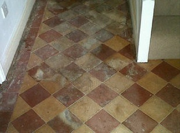 Restoring Neglected Victorian Hallway Tiles in Norwich | Tile ...