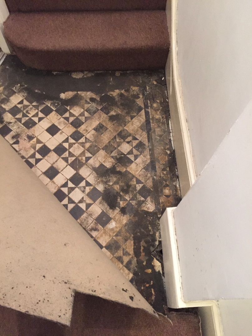 Tessellated Victorian Hallway Restoration In Bounds Green