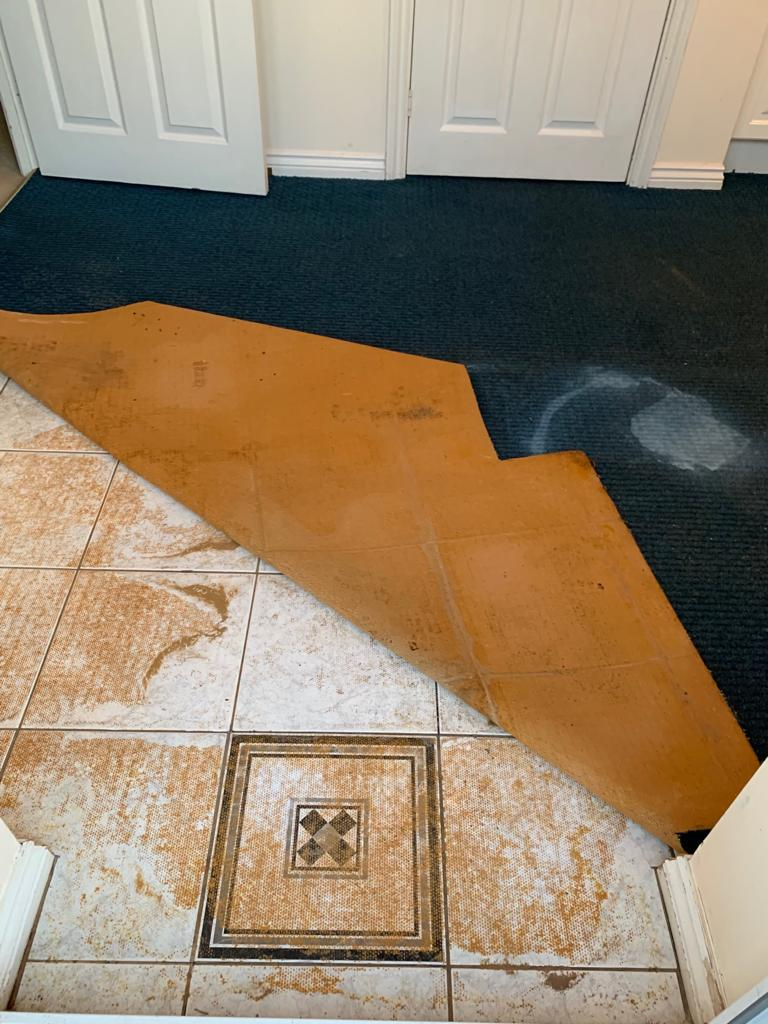 Removing Carpet Adhesive From A Ceramic Tiled Floor In